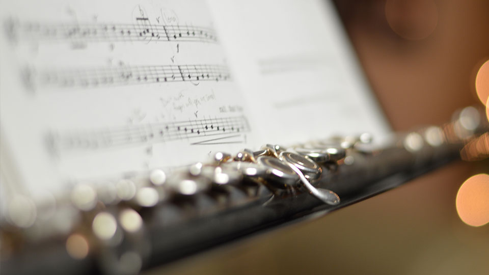 flute-insurance-small